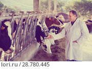 Купить «Male quality expert is standing in uniform and checking the quality of milk at the farm.», фото № 28780445, снято 24 октября 2017 г. (c) Яков Филимонов / Фотобанк Лори