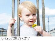 Купить «Маленькая девочка с цветком одуванчика смотрит сквозь решетку забора», фото № 28797217, снято 6 июня 2018 г. (c) Момотюк Сергей / Фотобанк Лори