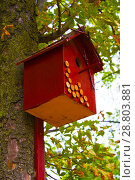 Купить «birdhouse on the tree», фото № 28803881, снято 31 августа 2017 г. (c) Guru3d / Фотобанк Лори
