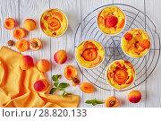 Купить «Baked apricot clafoutis placed on the wire rack», фото № 28820133, снято 22 июля 2018 г. (c) Oksana Zh / Фотобанк Лори