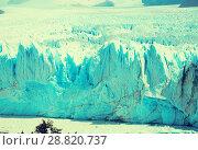 Купить «Glacier Perito Moreno, southeast of Argentina», фото № 28820737, снято 2 февраля 2017 г. (c) Яков Филимонов / Фотобанк Лори
