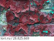 Купить «Часть старой кирпичнай стены. Облупившаяся краска. Текстура. Фон», фото № 28825669, снято 24 июля 2018 г. (c) Алёшина Оксана / Фотобанк Лори