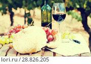 Купить «glass of red wine ripe grapes and bread in vineyard», фото № 28826205, снято 11 сентября 2017 г. (c) Татьяна Яцевич / Фотобанк Лори
