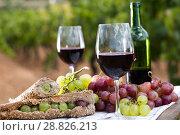 Купить «sandwich with green grapes on table in vineyard», фото № 28826213, снято 11 сентября 2017 г. (c) Татьяна Яцевич / Фотобанк Лори