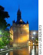 Купить «Night view of Donjon du Capitole, Toulouse», фото № 28826873, снято 11 мая 2017 г. (c) Яков Филимонов / Фотобанк Лори