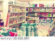 Купить «Chemistry department with detergents on shelves», фото № 28826881, снято 11 июля 2017 г. (c) Яков Филимонов / Фотобанк Лори
