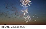 Купить «Beautiful fireworks in a night sky», видеоролик № 28833005, снято 20 октября 2018 г. (c) Евгений Ткачёв / Фотобанк Лори