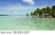 Купить «tropical beach with palm trees and sunbeds», видеоролик № 28833261, снято 1 июля 2018 г. (c) Syda Productions / Фотобанк Лори