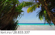 Купить «tropical beach with cocopalms in french polynesia», видеоролик № 28833337, снято 1 июля 2018 г. (c) Syda Productions / Фотобанк Лори