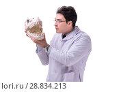 Купить «Funny crazy professor paleontologyst studying animal skeletons i», фото № 28834213, снято 27 февраля 2018 г. (c) Elnur / Фотобанк Лори