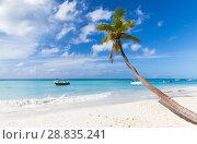 Купить «Caribbean Sea coast, Dominican republic», фото № 28835241, снято 7 января 2017 г. (c) EugeneSergeev / Фотобанк Лори