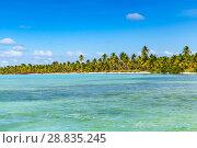 Купить «Background photo of Caribbean Sea coast», фото № 28835245, снято 7 января 2017 г. (c) EugeneSergeev / Фотобанк Лори