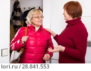 Купить «Mature lady visiting her neighbor», фото № 28841553, снято 22 ноября 2017 г. (c) Яков Филимонов / Фотобанк Лори