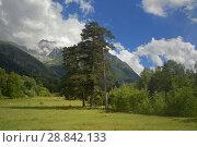 Купить «Caucasus in summer», фото № 28842133, снято 23 июля 2018 г. (c) александр жарников / Фотобанк Лори