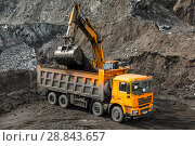 Купить «Large quarry dump truck. Loading the rock in dumper. Loading coal into body truck. Production useful minerals. Mining truck mining machinery, to transport coal from open-pit as the coal production.», фото № 28843657, снято 22 июня 2018 г. (c) Сергей Тимофеев / Фотобанк Лори