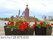 Купить «Flowers on background of Stockholm City Hall (1923), building of Municipal Council for City of Stockholm in Sweden», фото № 28875633, снято 9 июля 2018 г. (c) Валерия Попова / Фотобанк Лори