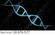 Купить «virtual dna molecule over black background», видеоролик № 28876577, снято 24 августа 2019 г. (c) Syda Productions / Фотобанк Лори
