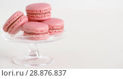 Купить «pink macarons on glass confectionery stand», видеоролик № 28876837, снято 13 июля 2018 г. (c) Syda Productions / Фотобанк Лори
