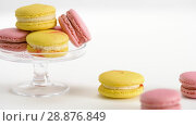 Купить «yellow and pink macarons on glass stand and table», видеоролик № 28876849, снято 13 июля 2018 г. (c) Syda Productions / Фотобанк Лори