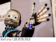 Купить «'Nikita' the robots name is an I Cub that is able to track objects and react, on show from Edinburgh centre of Robotics at Heririot Watt University at...», фото № 28878953, снято 22 марта 2017 г. (c) age Fotostock / Фотобанк Лори