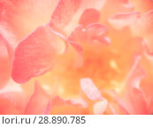 Купить «Abstract background of rose petals», фото № 28890785, снято 1 августа 2018 г. (c) Антон Гвоздиков / Фотобанк Лори