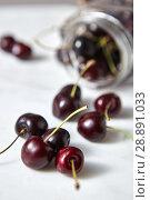 Купить «Home grown natural fresh cherries with shallow depth of field. Ingredients for sweet berries pie on white», фото № 28891033, снято 31 марта 2020 г. (c) Ярослав Данильченко / Фотобанк Лори