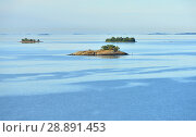 Купить «Seascape. Early morning in Baltic Sea», фото № 28891453, снято 9 июля 2018 г. (c) Валерия Попова / Фотобанк Лори