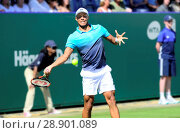 Купить «Jay Clarke (GB) playing at the Nature Valley International, Eastbourne 27th June 2018.», фото № 28901089, снято 27 июня 2018 г. (c) age Fotostock / Фотобанк Лори