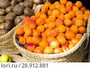 Купить «appetizing apricots in wicker baskets on counter in market», фото № 28912881, снято 26 мая 2018 г. (c) Татьяна Яцевич / Фотобанк Лори