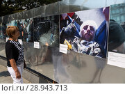 Купить «On the Independence Day, people watch a photo exhibition that deals with the events of May 2014 in Kiev», фото № 28943713, снято 24 августа 2016 г. (c) Caro Photoagency / Фотобанк Лори