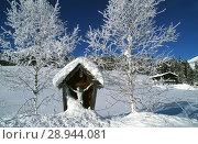 Leutasch, Austria, winter landscape in the Leutasch Valley (2001 год). Редакционное фото, агентство Caro Photoagency / Фотобанк Лори