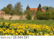 Купить «Zudar, Germany, view to St. Lawrence Church», фото № 28944581, снято 4 мая 2007 г. (c) Caro Photoagency / Фотобанк Лори