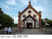 Купить «Poland, Pomerania - Krynica Morska on the Fresh Spit (Baltic Sea)», фото № 28945781, снято 26 августа 2015 г. (c) Caro Photoagency / Фотобанк Лори