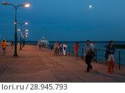 Купить «Poland, Pomerania - Krynica Morska on the Fresh Spit (Baltic Sea)», фото № 28945793, снято 26 августа 2015 г. (c) Caro Photoagency / Фотобанк Лори