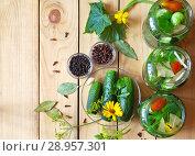 Купить «Top view of green fresh cucumber and jars with pickled cucumbers on a wooden background. Traditional Russian cuisine», фото № 28957301, снято 27 июля 2018 г. (c) Виктория Катьянова / Фотобанк Лори