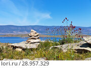 Купить «Lake Baikal in a summer sunny day. A traditional pyramid of stones on the high hill of the island of Olkhon. Crimson inflorescence of the plants of Great burnet or Sanguisorba officinalis against the background of the Small Sea Strait», фото № 28957329, снято 9 августа 2018 г. (c) Виктория Катьянова / Фотобанк Лори