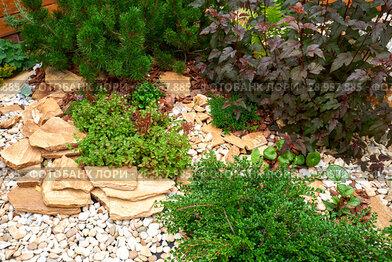 Купить «Garden Design. Flowerbed in the yard in landscape design», фото № 28957885, снято 30 июля 2018 г. (c) Евгений Глазунов / Фотобанк Лори