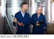 Купить «Worker taking notes in fermentation section», фото № 28958081, снято 19 января 2019 г. (c) Яков Филимонов / Фотобанк Лори