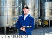 Купить «Portrait of young man worker on wine factory», фото № 28958109, снято 16 августа 2018 г. (c) Яков Филимонов / Фотобанк Лори