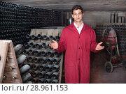 Купить «Male wine maker showing bottles on winery», фото № 28961153, снято 21 сентября 2016 г. (c) Яков Филимонов / Фотобанк Лори