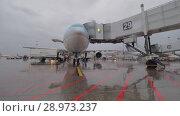 Купить «Korean Air plane being prepared for flight from Sheremetyevo Airport», видеоролик № 28973237, снято 4 октября 2017 г. (c) Данил Руденко / Фотобанк Лори