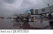 Купить «Boarding and loading cargo to Korean Air aircraft at Sheremetyevo Airport, Moscow», видеоролик № 28973553, снято 4 октября 2017 г. (c) Данил Руденко / Фотобанк Лори