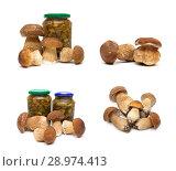Купить «Pickled and fresh forest mushrooms on a white background», фото № 28974413, снято 19 мая 2014 г. (c) Ласточкин Евгений / Фотобанк Лори