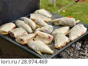 Купить «Рыба жарится на протвине», эксклюзивное фото № 28974469, снято 30 июля 2018 г. (c) Юрий Морозов / Фотобанк Лори
