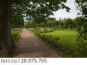Купить «Ряды деревьев, с геометрически правильной планировкой, в Нижнем саду в Екатерининском парке. Санкт-Петербург, Пушкин, Царское Село», фото № 28975765, снято 19 августа 2017 г. (c) Pukhov K / Фотобанк Лори