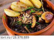 Baked mushrooms with potatoes. Стоковое фото, фотограф Яков Филимонов / Фотобанк Лори