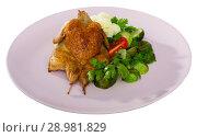Купить «Grilled partridge with steamed vegetables», фото № 28981829, снято 22 марта 2019 г. (c) Яков Филимонов / Фотобанк Лори