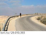 Tourists on road in mountains. Views of Ein Avdat, Zin Valley. Negev, desert and semidesert region of southern Israel (2018 год). Редакционное фото, фотограф Валерия Попова / Фотобанк Лори