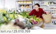 Купить «Girl buys a variety of vegetables», фото № 29010769, снято 1 марта 2017 г. (c) Яков Филимонов / Фотобанк Лори