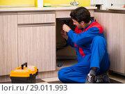 Купить «Plumber repairing wash basin at kitchen», фото № 29011993, снято 14 июня 2018 г. (c) Elnur / Фотобанк Лори